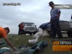 На трассе Оренбург-Орск задержали браконьеров