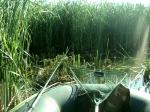 Рыбалка на Байтуке
