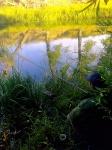 Рыбалка за Ударником (Тереклинка)