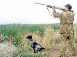 Установлены зоны добывания охотничьих ресурсов в весенний период 2012 года