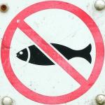 Запрет на вылов рыбы в весенне-летний период 2012 года