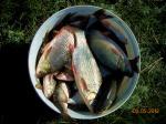 Рыбалка на Джусе.