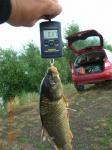 Завоз малька карпа на пруд в Малохалилово и моя рыбалка