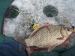 3 дня на рыбалке