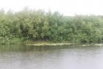 Рыбалка под дождём!
